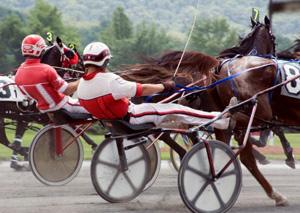NJ Horse Racing Accident