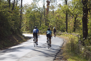 New Jersey Bike Accidents