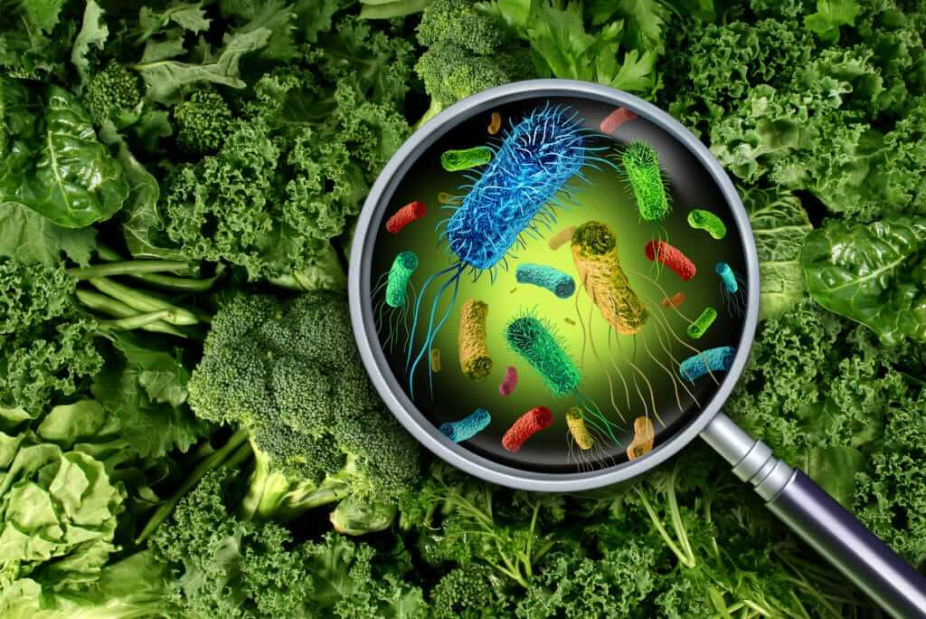 Assortment of germs on green-vegetable background revealed under magnifying glass