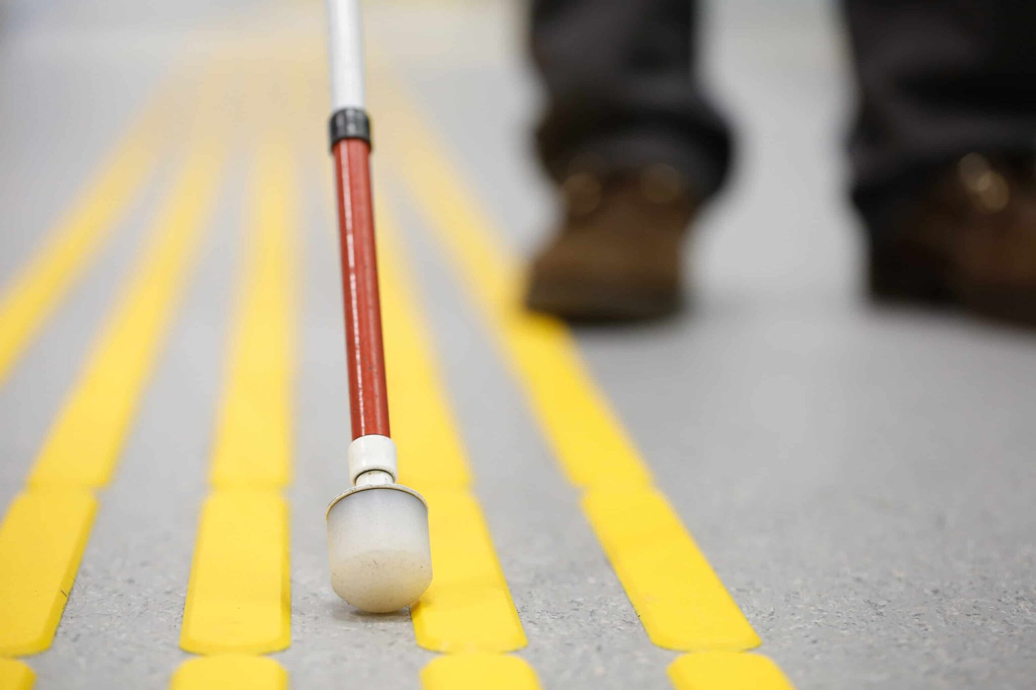 Walking stick touching ground in a crosswalk